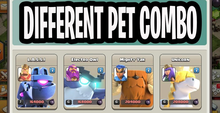 Different Pet Combo With Pekka Smash TH14 | Clash of Clans by Lando Gaming
